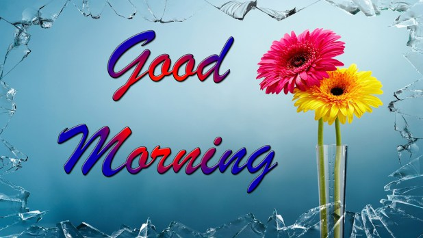 Top 100 Good Morning Image Download Hd Picture Gif Animation For