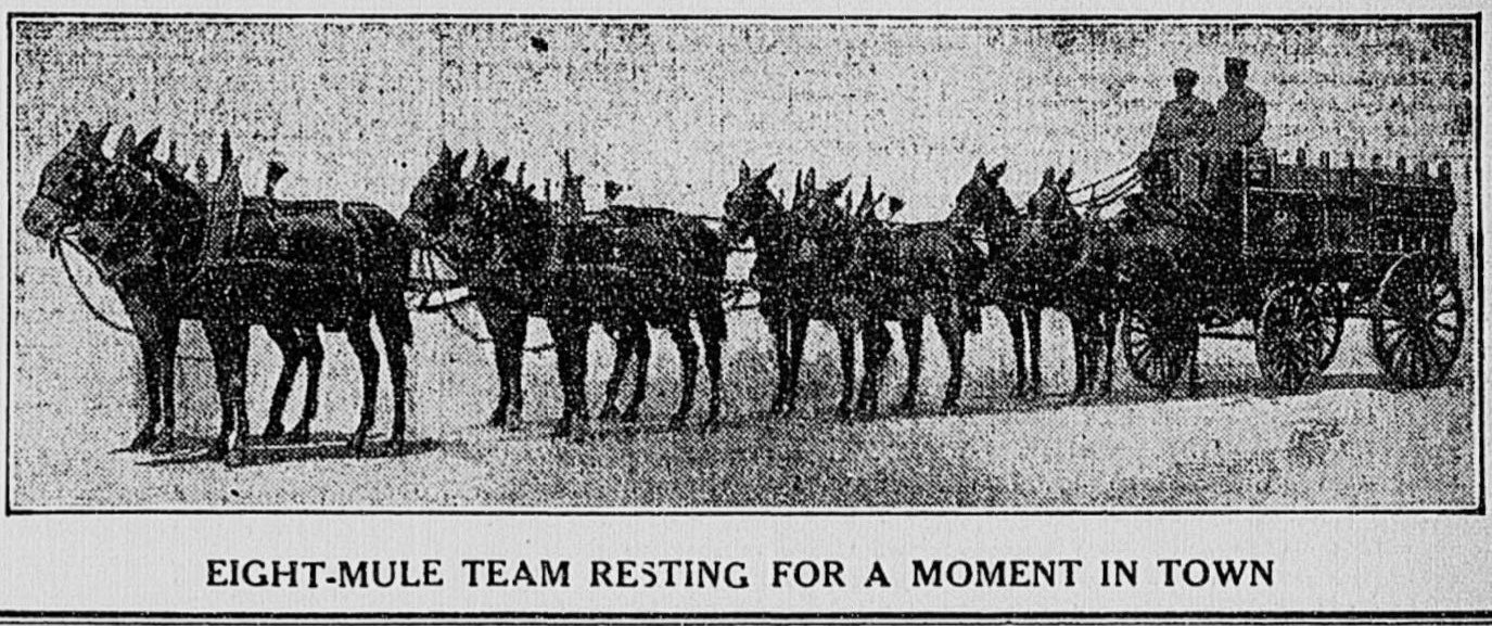 Budweiser Beer Wagon - The Times Dispatch (Richmond, VA), August 30, 1911, page 3. Fuente: Early Sports and Pop Culture History Blog, Peter Jensen Brown.