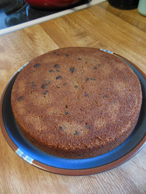 Applesauce Spice Chocolate Chip Cake