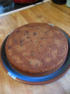 Applesauce Spice Chocolate Chip Cake!