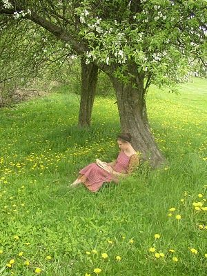 Cantinhos aconchegantes para ler
