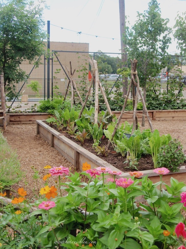 Magnolia Market Garden Raised Vegetable Bed