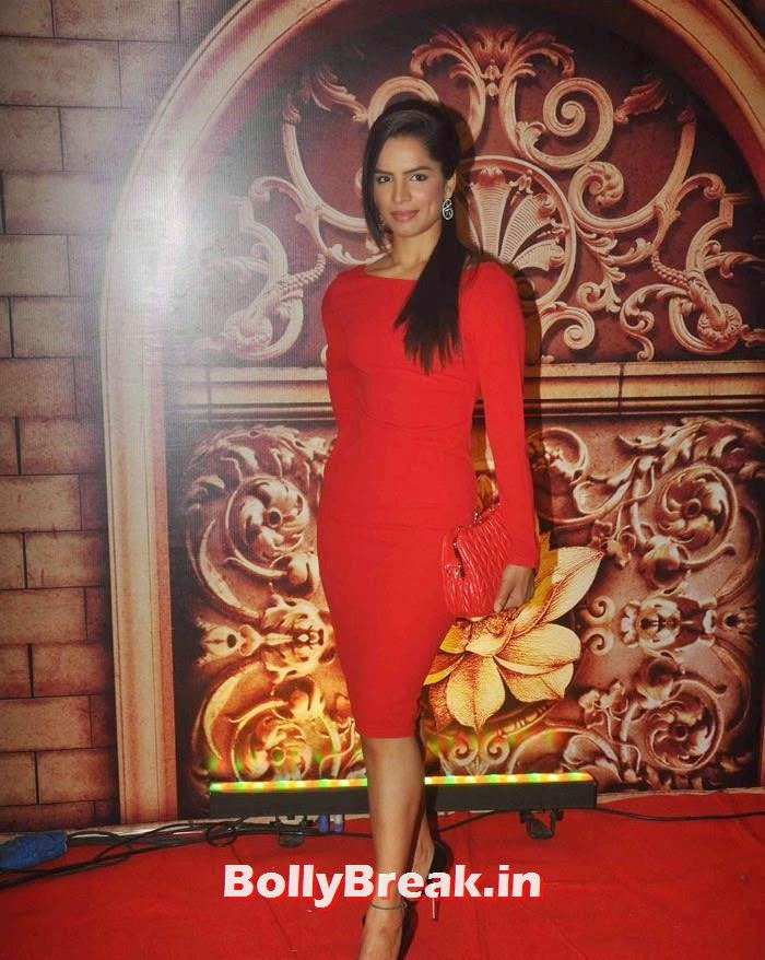 Shikha Singh, Zee Rishtey Awards 2014 Photo Gallery