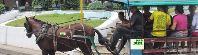 CARROÇAS NÃO PARAM: Justiça suspende greve das carroças do SIM
