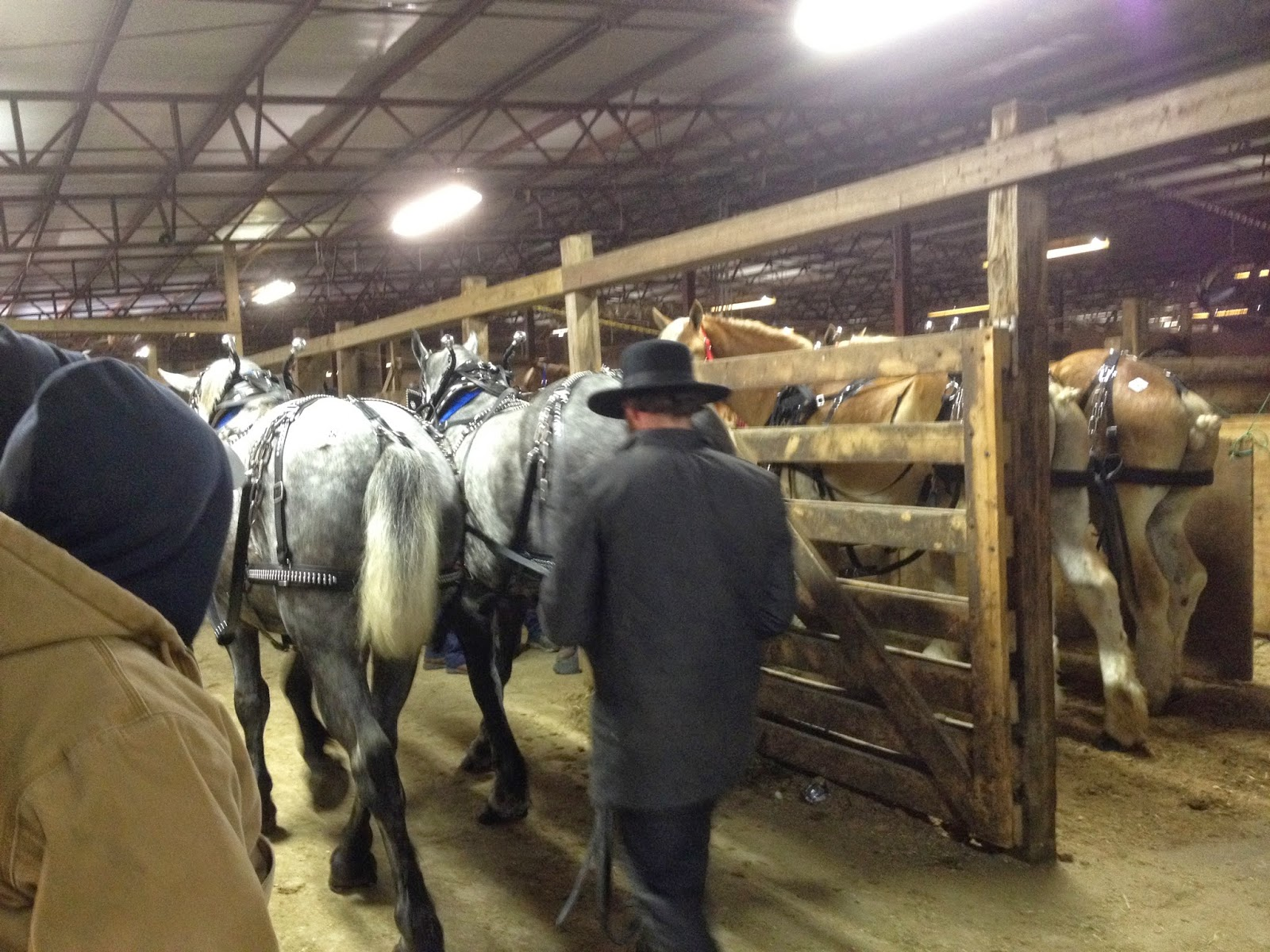 in shed barns run catskill amish sale ny built monitor horse for