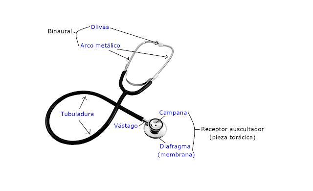 fonendoscopio, estetoscopio