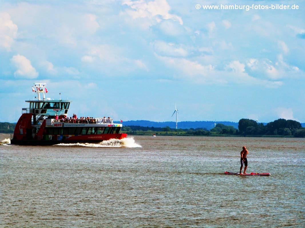 Stand up Paddeln auf der Elbe in Hamburg
