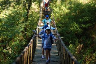 6 điểm chụp hình đẹp như mơ ở Lâm Đồng 3