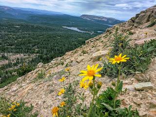 Bald Mountain by Mirror Lake in Uintas Kamas, Utah