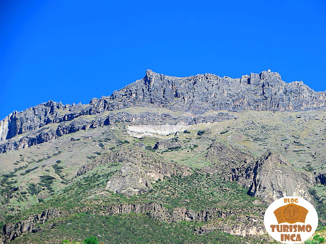 Alca Cañón de Cotahuasi