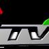 Frequency of E TV Emilia Romagna