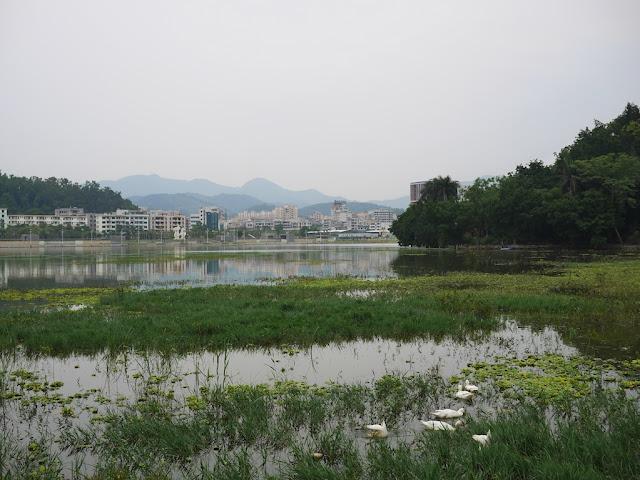 Panlong Lake Scenic Area in Yunfu