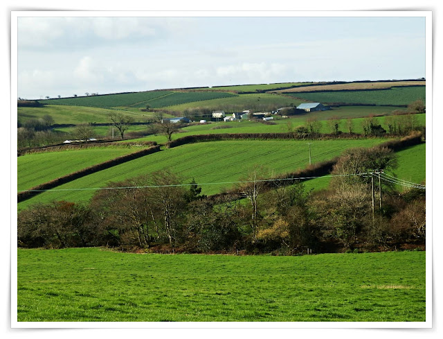 Farmer's green fields in Cornwall