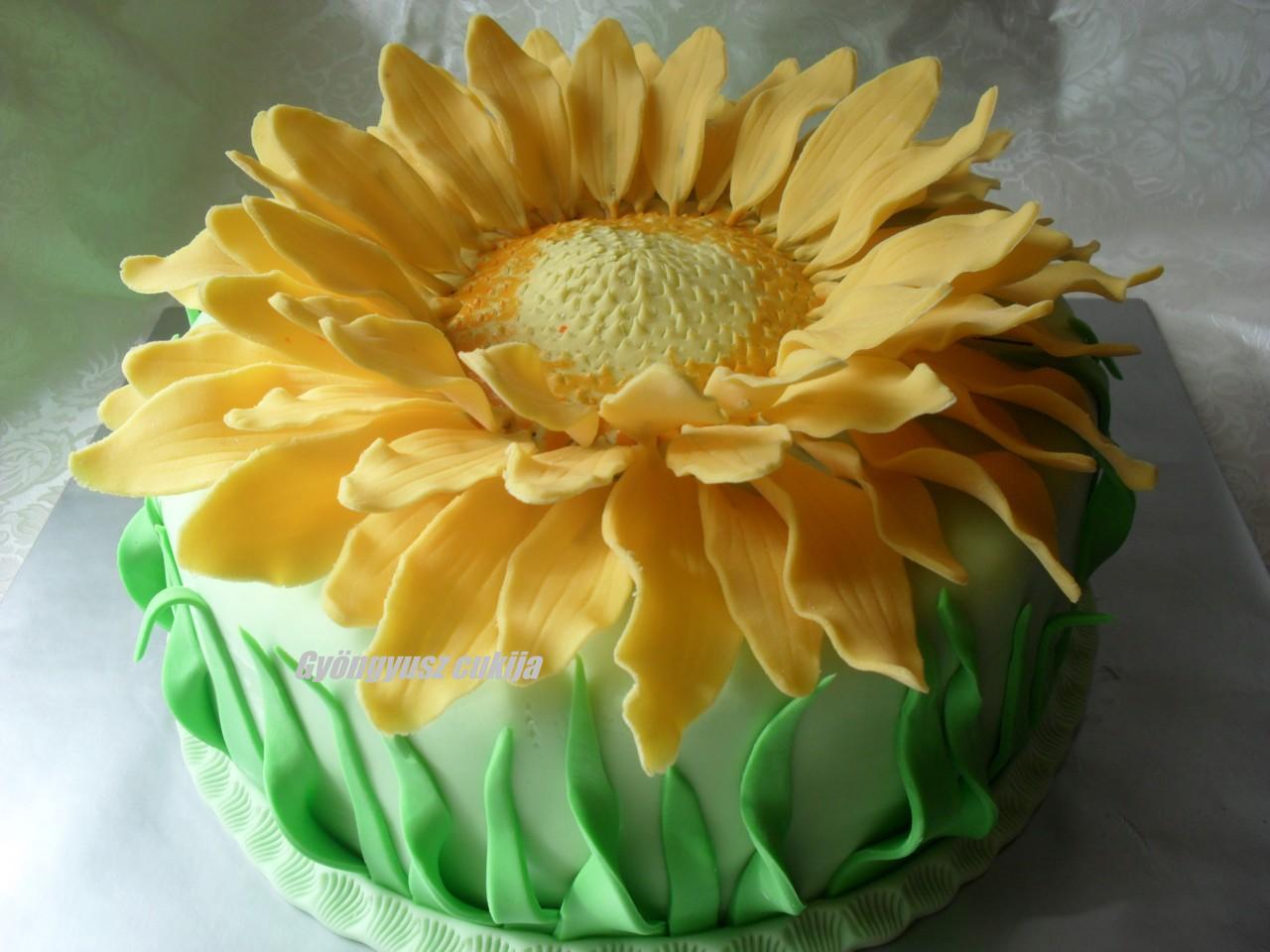 napraforgó torta képek Gyöngyusz konyhája és cukrászdája: Napraforgó torta napraforgó torta képek