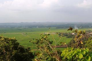 Bukit PJR Desa Panjerejo Pringsewu