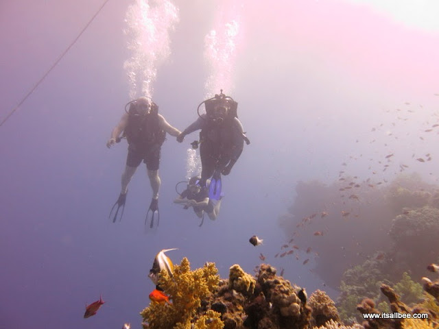 Red Sea Diving - Couples Travel | Couples Holidays | 8 Tips For Travelling As A Couple