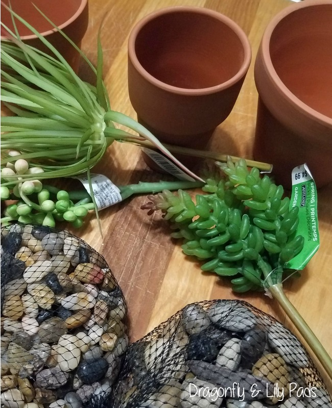 Clay pots, succulent, pea gravel, supplies needed for clay pots glamour