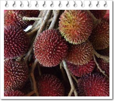 Manfaat buah kapulasan