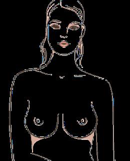 Inilah 7 tipe bentuk payudara wanita