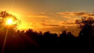 Salmo 98 – oração poderosa para Louvar o Nome do Senhor