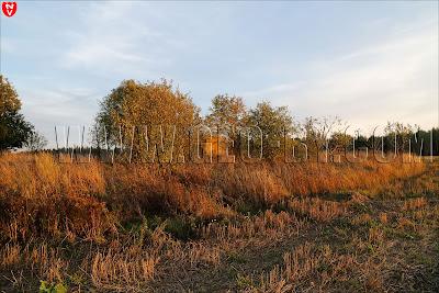 Третий бункер у деревни Кудиновичи. Орудийно-пулеметный ДОТ. Вечерний пейзаж