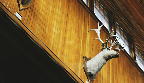 Banff Park Museum Alberta