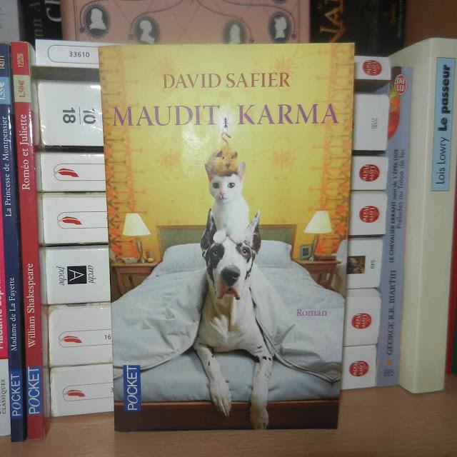 Maudit Karma un roman de David Safier