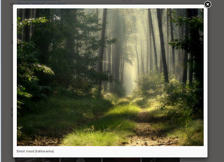 7+ jQuery Lightbox Plugin Examples with Demo - ASP NET,C#