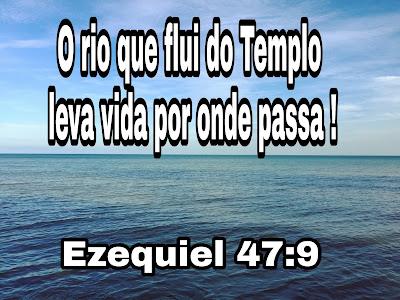 Resultado de imagem para Ezequiel 47,1-12