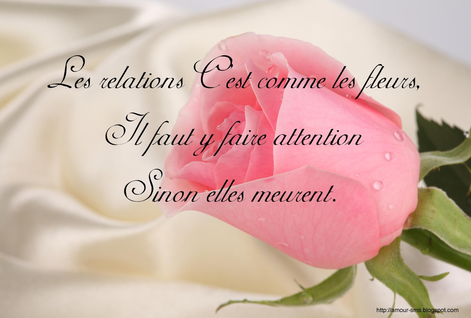 Message d'amour: Proverbes et citations d'amour en images