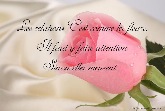 proverbe d'amour