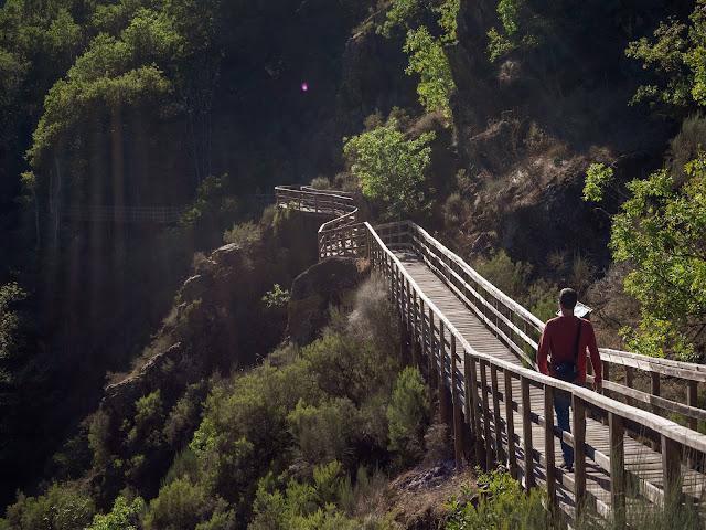 Hombre de espaldas caminando por unas pasarelas de madera