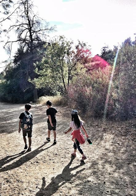 Limekilhn Canyon trail