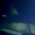 Ένα από τα μεγαλύτερα μυστήρια γύρω από τη ζωή του Λευκού Καρχαρία φαίνεται ότι έλυσαν επιστήμονες