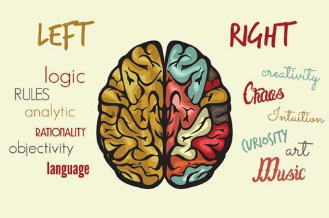 Perbedaan Otak Kanan dan Otak Kiri