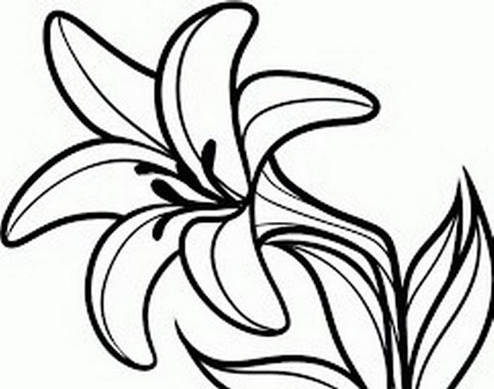 Flores Faciles Finest Flores Fciles De Papel De Colores With Flores