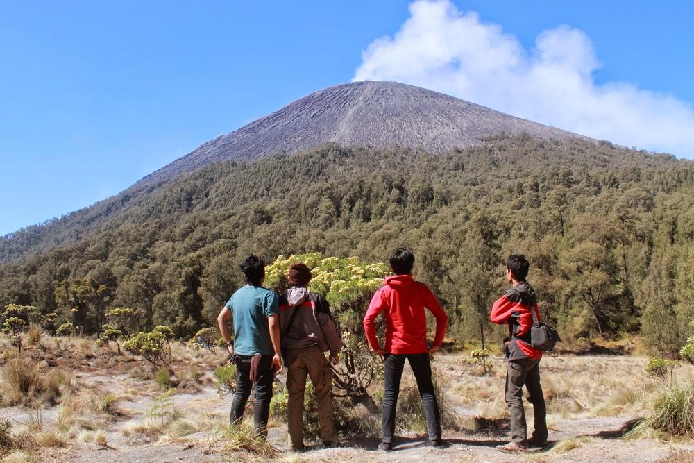 Puncak Gunung Semeru dari Kali Mati