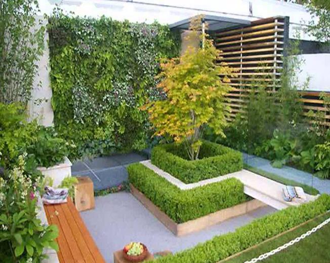 Desain Taman Belakang Rumah Gaya Minimalis Untuk Lahan Yang Sempit