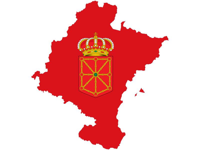 El PSN-PSOE presentamos 68 Listas Municipales