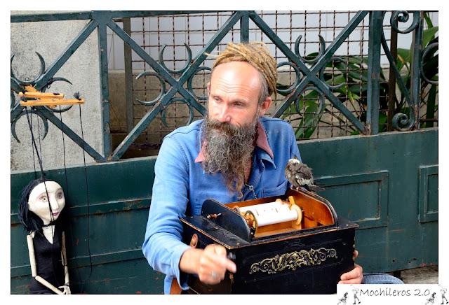 Músico callejero, Oporto