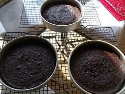 Cafe Latte Turtle Cake Recipe