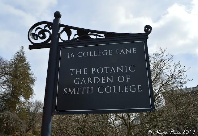 Botanical Garden at Smith College Spring Bulb Show