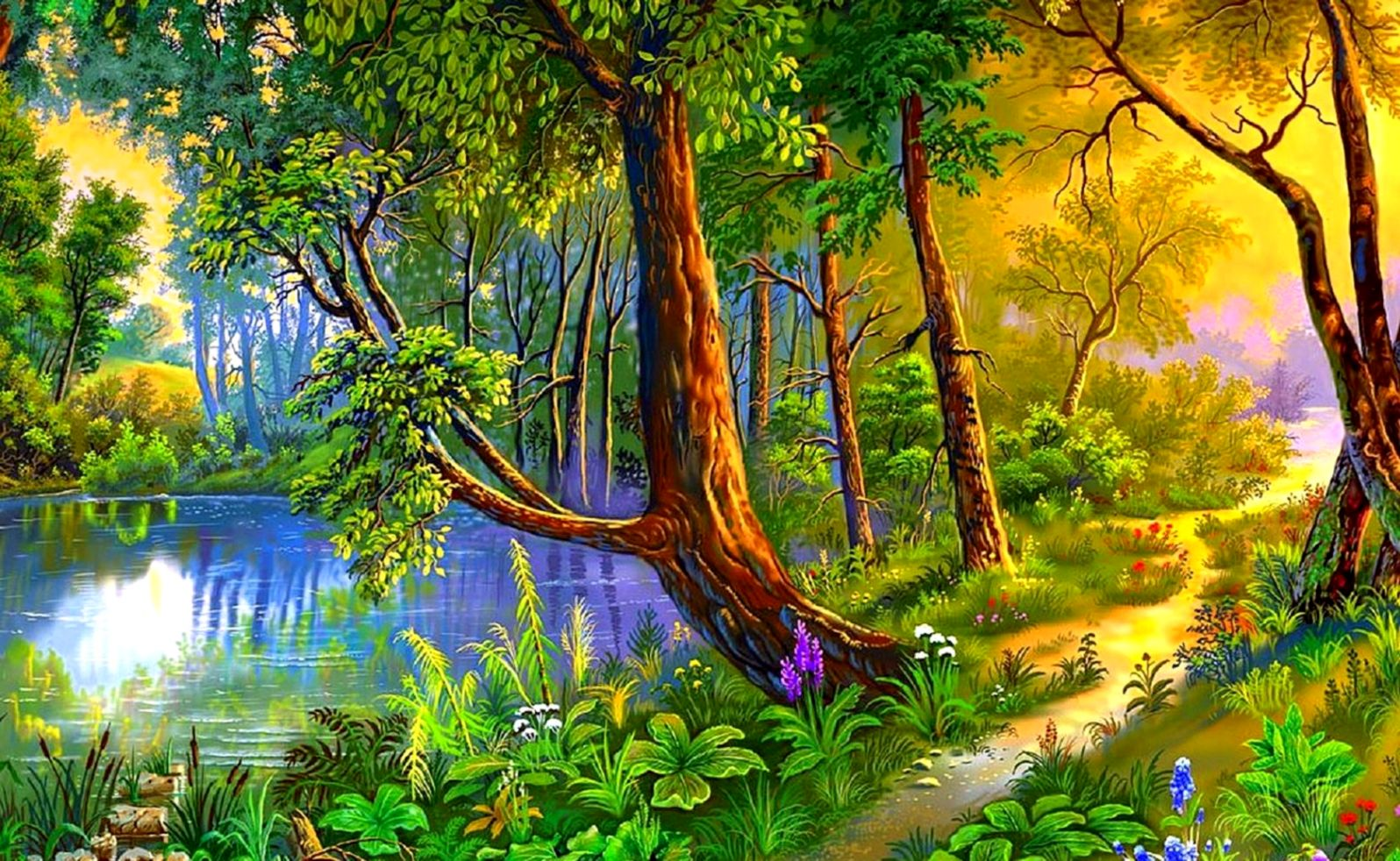 Beautiful Forest Path Summer Nature Scenery Wallpaper