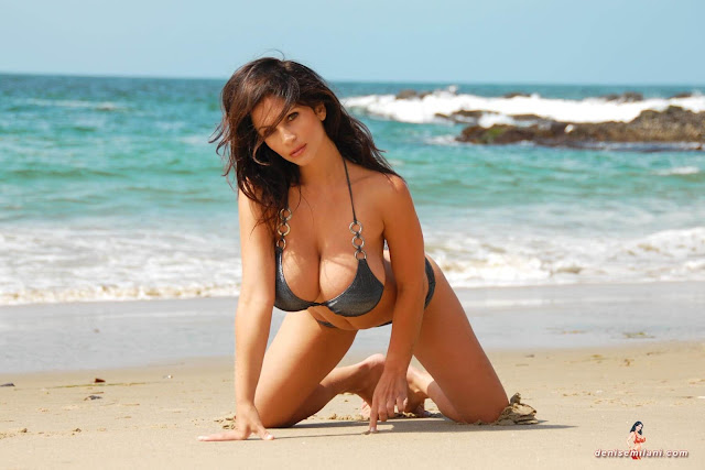 Denise-Milani-Beach-Silver-bikini-hottest-photoshoot-pics-23