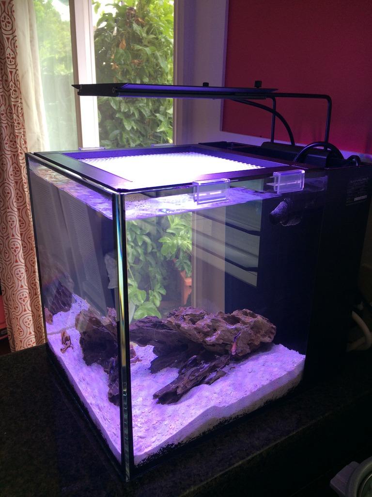 Aquamaxx nemolight powerful attractive and affordable for Spacearium aquariums
