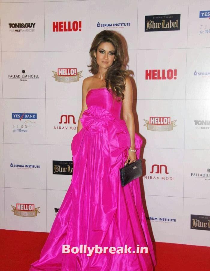 Natasha Poonawala, Hello Awards 2013 Pics