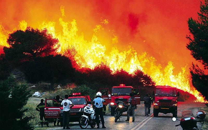 """Οργανισμός Διαχείρισης Πυρκαγιών Δασών και Υπαίθρου: Ένα απροκάλυπτο """"συντεχνιακό μόρφωμα"""""""
