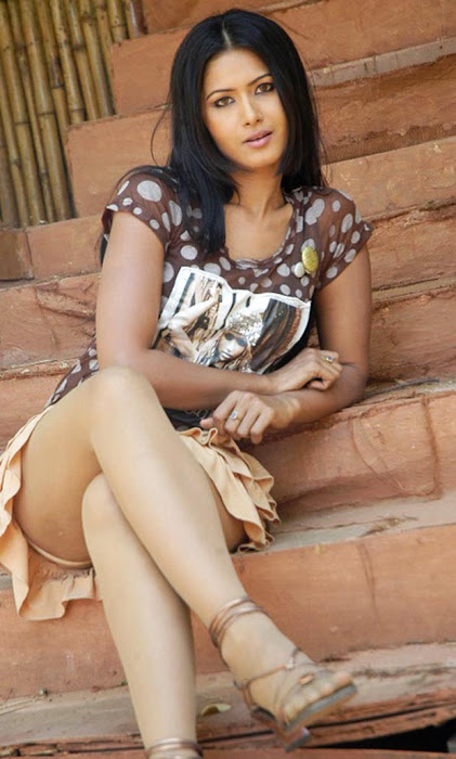 divya dwivedis spicy cross leg hot  photoshoot