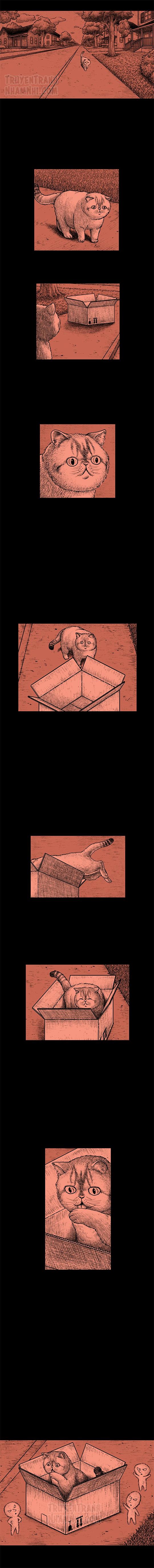 Hắc Ám Truyện #135: Hộp cạc tông (2)