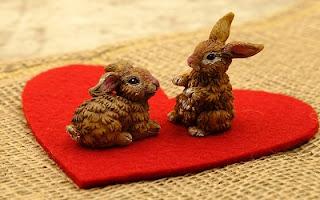 Conigli che si amano